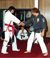 The King of Karate